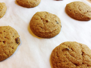 Pumpkin Chocolate Chip Cookie