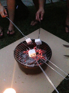 RoastingMarshmallows