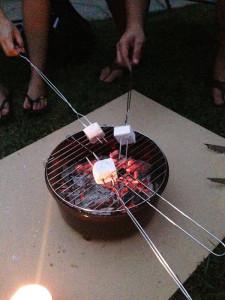 RoastingMarshmallows